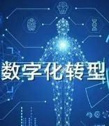工信部:将出台相关产业数字化转型政策