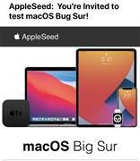 苹果邀请邮件搞乌龙:macOS Big Sur 变 Bug Sur