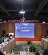 重庆首个地方区块链标准发布 3月1日起正式实施