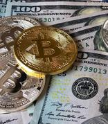 数字货币全线大跌,三协会发文回归区块链本质