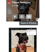 "Gmail新增""保存到Photos""按钮 一次点击轻松转存"